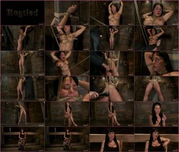 http://thumbnails51.imagebam.com/15793/fbd82d157925558.jpg